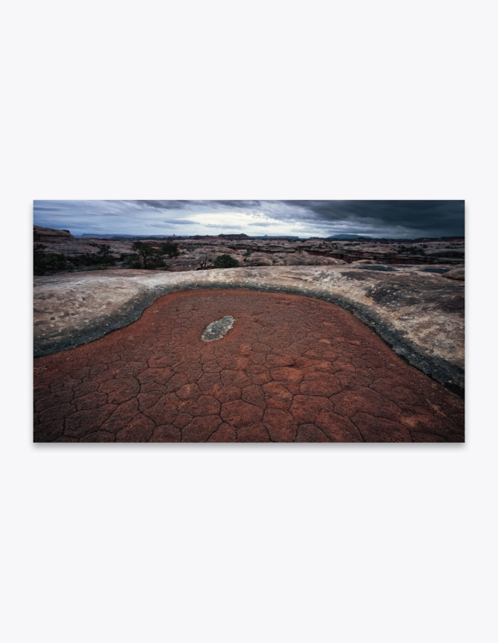These dry basins, known as ephemeral pools, found throughout Canyonlands National Park wait patiently for the spring monsoons to refill their mini eco systems. They may look desolate and depleted but they are full of life. In the short span of time after they fill with water, tiny creatures from mites to snails, tadpoles and even a type of desert fairy shrimp go through an entire life cycle. Just long enough to reproduce and create eggs for the next dry spell.