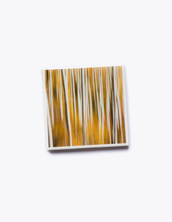 Cadmium Yellow - Coaster