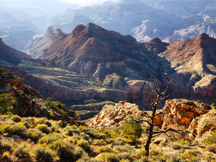 POTD: Grandest of Canyons