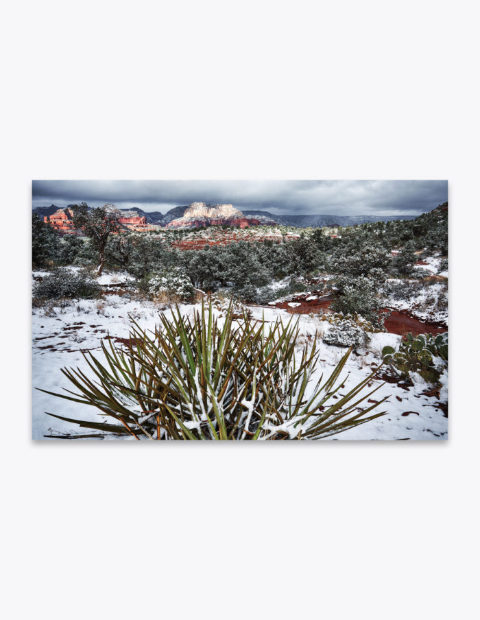Sedona, Arizona had a White Christmas this year and it's causing me to reminisce last year's December hike through the snowy red rocks.